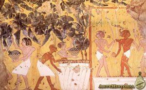 antiguo egipto vendimia