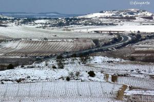 diana ugarte viñedos nevados san asensio
