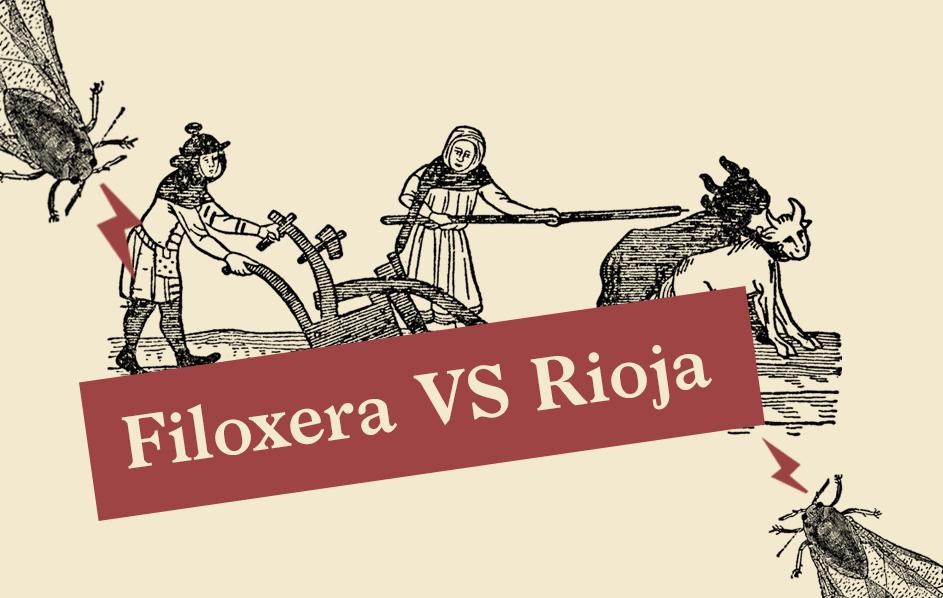 Filoxera vs Rioja